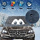 Mercedes Benz Winterabdeckung Eisschutz
