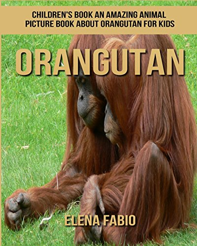 Children's Book: An Amazing Animal Picture Book about Orangutan for Kids