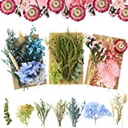 3 Packs Natural Dried Flowers Leaves Set, Dried Flowers for Resin Mold, Mixed Colorful Real Dry Flower for DIY