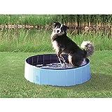 Bild: Trixie 39482 Hundepool hellblaublau