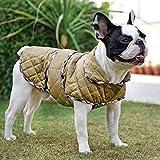 #3: HUFT Grrrberry Dog Jacket (4XL)