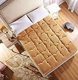JIAOHJ Premium-hypoallergen matratzenauflage,Gepolsterte matratze Bett,Tatami-Matte Simmons Boden plüsch-bettmatratze,Geldklammer-B 100x200cm(39x79inch)
