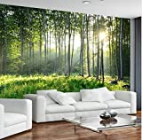YUANLINGWEI Custom Photo Wallpaper 3D Green Forest Nature Landscape Large Murals Living Room Tv Sofa Bedroom Modern Wall Painting Home Decor,100Cm (H) X 200Cm (W)