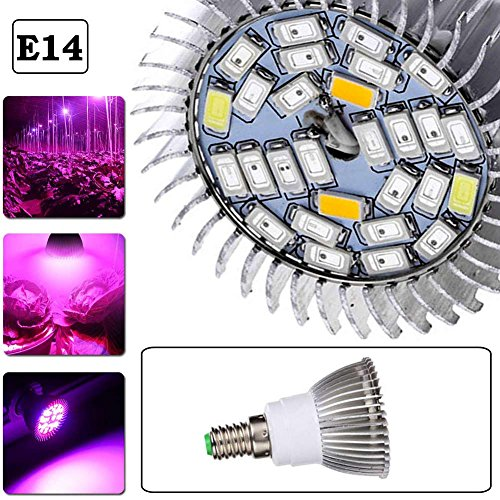 Luniquz 28LEDS LED-Pflanzenlicht Plein Spectre e14