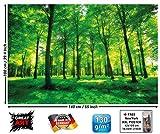 GREAT ART Affiche Arbres - Mur Decoration Paysage Naturel Pure Plante Fleur Foret relaxants avec trop de Soleil | Mur Deco Poster Mural Image by (140 x 100 cm)