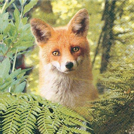20-servietten-ricky-the-fox-ricky-der-fuchs-wald-waldtiere-33x33cm