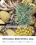 Import / Export: Vom Austausch in der Gartenkultur (topiaria helvetica)