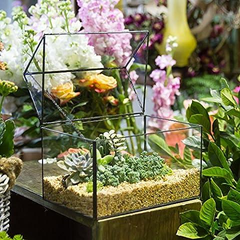 Grande maison close forme géométrique en verre terrariumn Table Plante à fleurs mousse Fougère avec couvercle basculant Reptile 21,8 x 15 x 19 cm