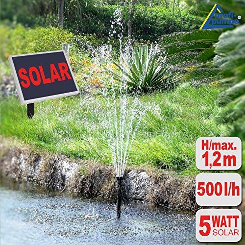 Amur SOLAR TEICHPUMPE SOLAR SPRINGBRUNNEN SOLAR WASSERSPIEL für Garten TEICH 5-Watt-Solarpanel mit STABILEM ALU-Rahmen OPTIMAL FÜR TEICHE BIS ca 4-5qm (Solar Oasis 500-1)