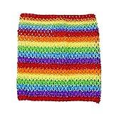 Qinlee 9 Zoll Kinder Elastische Crochet Tube BH Tutu Rock Brust Wrap Kopf Stirnband DIY BH Boob Tops Weste für Mädchen (Regenbogen)