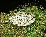 Tuneon Kreis Edelstahl Garten Friedhof Beeteinfassung Blech Gartenform rostfrei