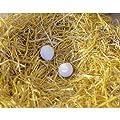 Nesteier aus Ton für Hühner 2 Stck. /Blister von Kerbl - Du und dein Garten