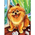 SO-buts 5D DIY Full Square Drill Muiltycoloured Diamond Painting Dogs Cats Wolves Fox Tiger Embroidery Cross Stitch Arts Craft Canvas Wall Decor Embroidery Paintings Rhinestone Gift For Father's Day Monther's Day - inexpensive UK light store.