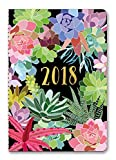Succulents On-Time 2018 Weekly Planner: 17 Month