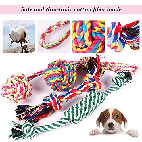 Habier Hundespielzeug, 6 Stück Kauspielzeug Hund Spielzeug Set Baumwollknoten Spielset Seil Interaktives Spielzeug für Kleine und Mittlere Hunde - 3