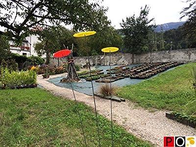 Cazador del sol - Uno Sonnenfänger, gelb von Cazador-del-sol ® - Du und dein Garten