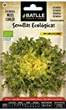 Semillas Ecológicas Hortícolas - Escarola Cabello