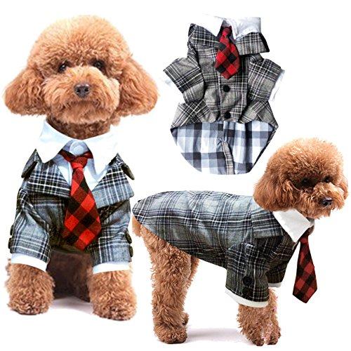 Haustier Kleidung Plaid Anzug Herbst Party Gentleman Hund Kleid LNAG , (Anzüge Charakter Für Verkauf)