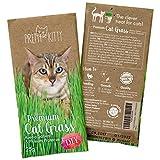 Premium Katzengras Samen von Pretty Kitty