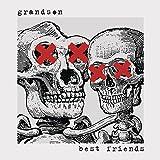 Best Sony Friends Rocks - Best Friends Review