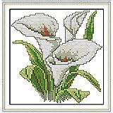 Chreey - Kit de Punto de Cruz | Flor de la Felicidad - Lirio de Cala | 17 x 17cm