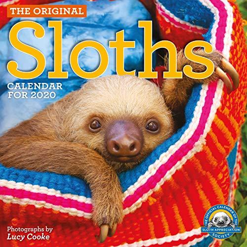 Original Sloths Wall Calendar 2020