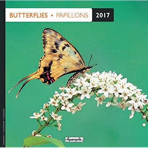Calendario 2017 – mariposas – Aquarupella