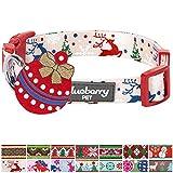 Blueberry Pet Festtagsfreude Bezaubernde Freude Designer Hundehalsband, S, Hals 30cm-40cm, Verstellbare Halsbänder für Hunde