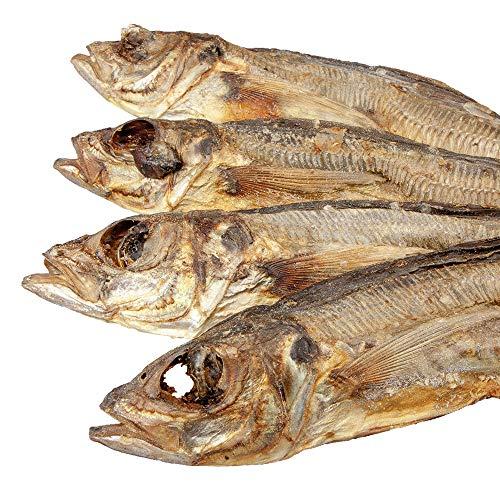 Schecker 250 g Makrele ganze Fische - 100% Holzmakrele - EIN gesunder Hundesnack - auch für Sensitive Hunde