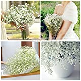 BESTIM INCUK FASHION 10 Pcs Gypsophila Artificial Fake Beautiful Flower Home Wedding