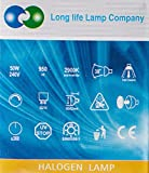 Long Life Lamp Company GU10 50 Watt Halogen TOP Brand Lamp Light Bulb (Pack of 10) Bild 2