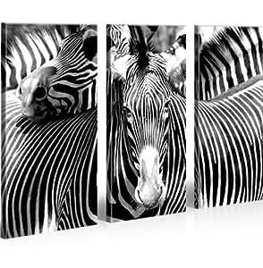 Zebra 3 quadri moderni su tela pronti da appendere for Stampe da appendere