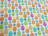 Qualitativ hochwertiger Jersey Stoff mit bunten Ananas auf