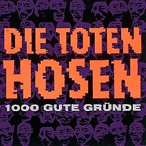 Toten Hosen - Musik vom Dach