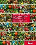 Fruits sauvages comestibles - 40 recettes originales