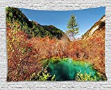daawqee Nature Tapestry Idyllic Fall Landscape with a Creek Among Forest in National Park Valley Art for Living Room Bedroom Dorm 60 W X 50 L Inches Unique Home Decor