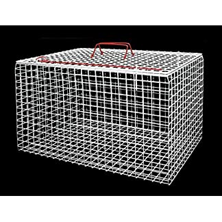 Premium Extra Large Wire Cat Carrier Basket (White) Premium Extra Large Wire Cat Carrier Basket (White) 61LWY7fyqiL