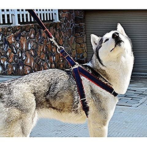 PYRUS Pet Supplies for Dogs Leashes Adjustable Harnesses and Heavy