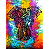 Healing Crystal India Cotton Wall Hanging (54x84-inches, Multicolour)