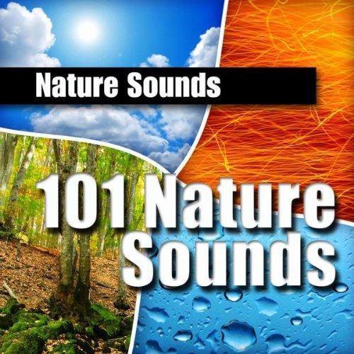 Babbling Brook - Nature Sound