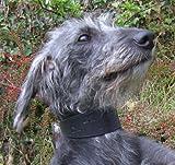finest. Weiches Leder Hound Halsbänder für Hunde. Hand gestempelt mit