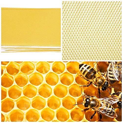 LECHI Waben-Stiftung - 30 Stück Imkerei Bienen Foundation Blatt Bienenenstock Rahmen Werkzeug für Honig Extraktor