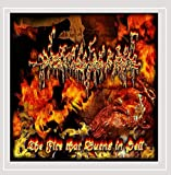 Songtexte von A Gruesome Find - The Fire That Burns in Hell