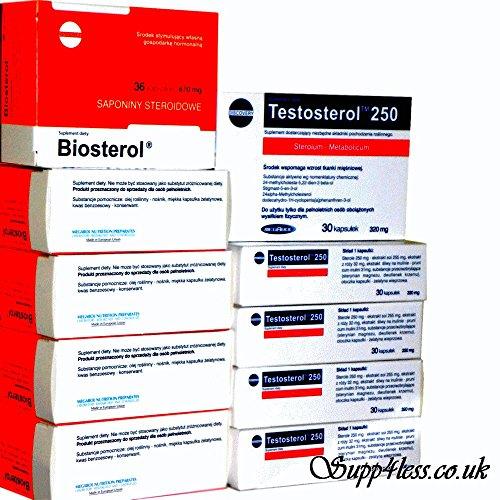 Östrogen-blocker (5x Testosterol 250+ 5x BIOSTEROL)