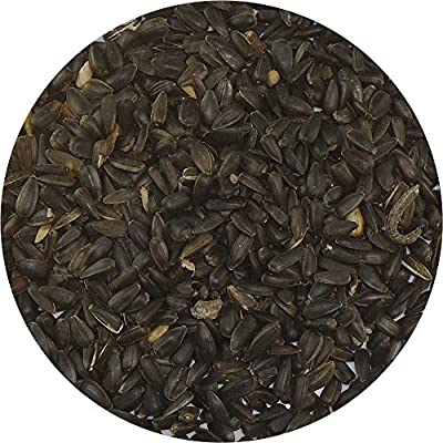 Black Sunflower Seed - Wild Bird Seed - Bird Table Seed - Garden - 100 G by LEEWAY WOODWORK