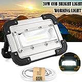 LED Arbeitsleuchte Campinglicht,COLORFUL 30 Watt USB COB LED Tragbare Wiederaufladbare Flutlicht Spot Arbeit Camping Outdoor Lampe (Silber)
