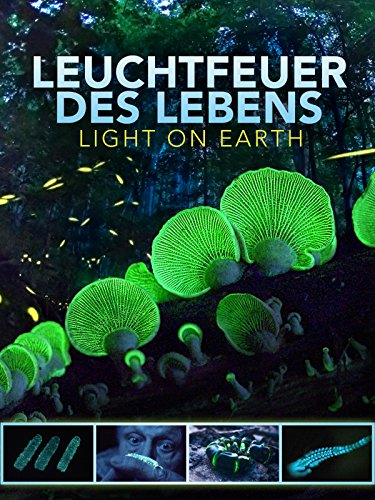 Leuchtfeuer des Lebens - Light on Earth Cover