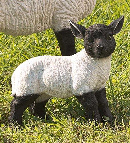 Statue de jardin Agneau Suffolk Mouton debout en résine