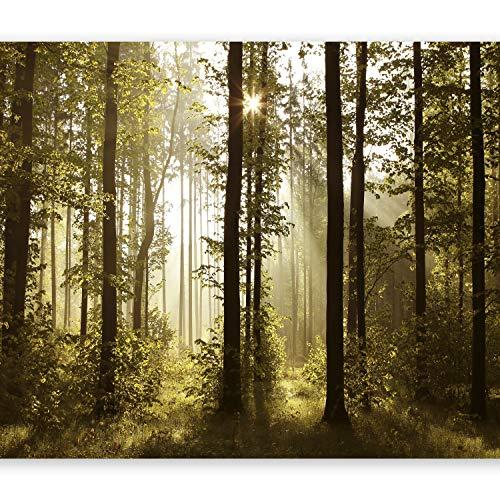 murando - Fotomurali adesivi - Foresta 343x256 cm - carta da parati audoadesiva - carta da parati moderna - fotomurale - carte da parati Paesaggio Natura Bosco Foresta Fiori c-B-0254-a-a