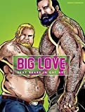 Big love: Sexy bears in gay art